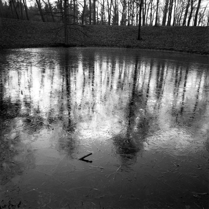 Photo : Philippe Schuller